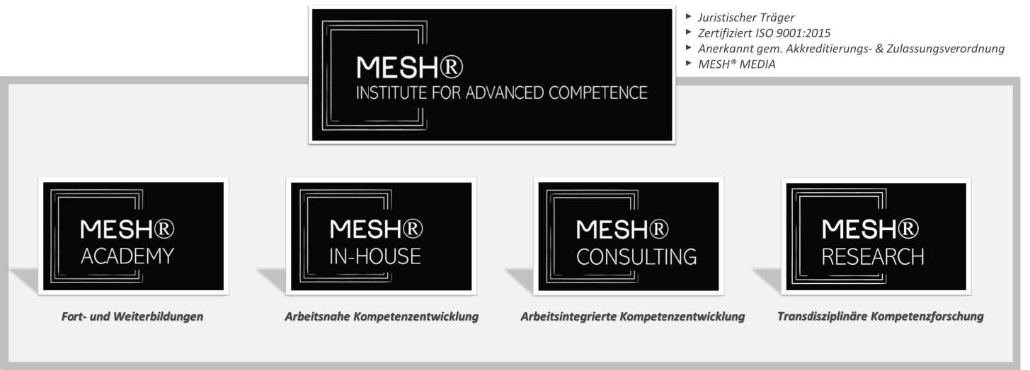MESH INSTITUTE ORGANIGRAMM